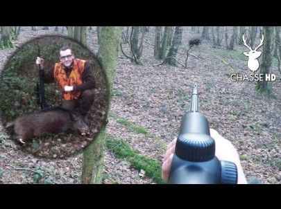 Chasse aux Sangliers : Des Battues Intenses - Chasse HD