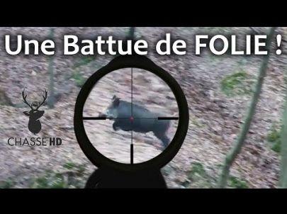 Chasse au Sanglier : une Battue de Rêve ! Amazing Driven Wildboar - Chasse HD