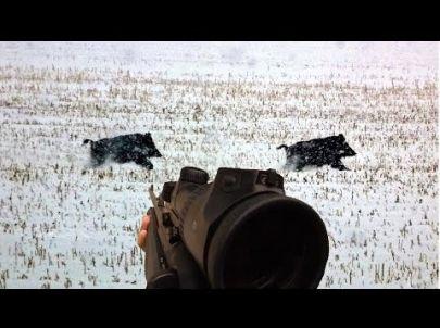 Battue de Sangliers sous la neige - Caméra GoPro - Chasse HD
