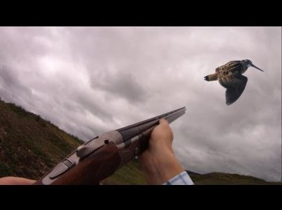 Compilation Chasse Petit Gibier - Caméra Embarquée GoPro - Chasse HD