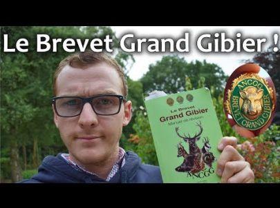 Passer l'épreuve du Brevet Grand Gibier - Chasse HD